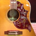 Gibson 5-Star Dealer - Tall Toad Music - Ice Tea Bird